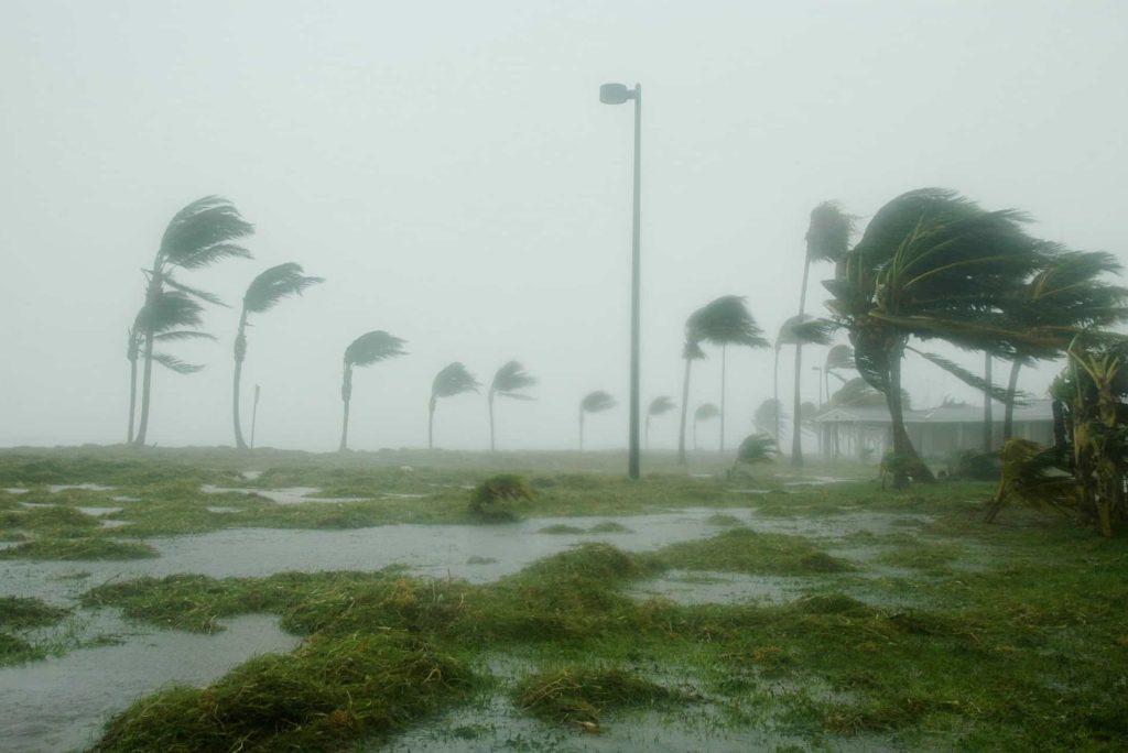 Walt Disney World tijdens orkaanseizoen, is het te doen?