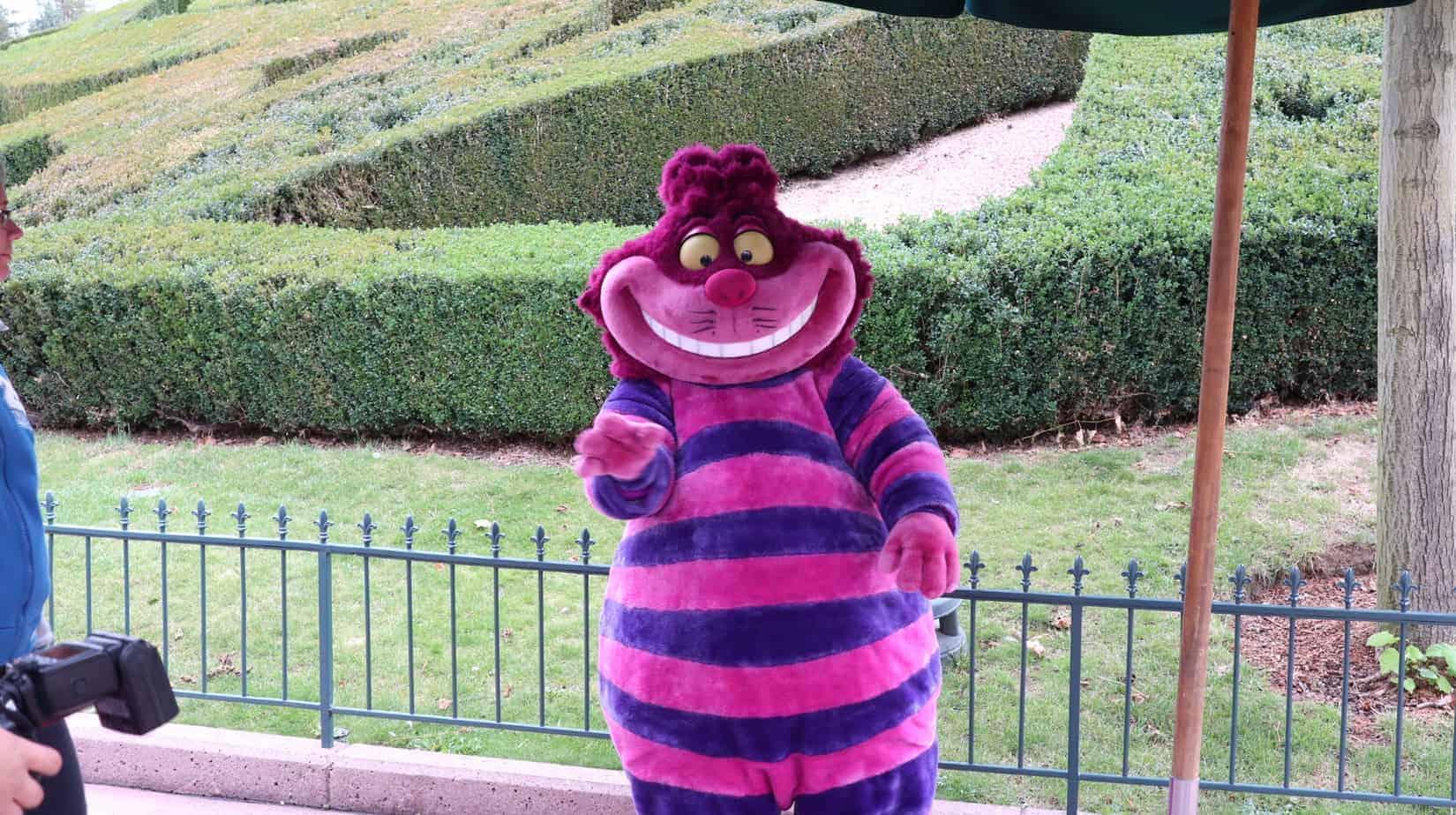 Disneyland Paris attractie
